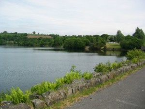 A view from the lower Lliw dam