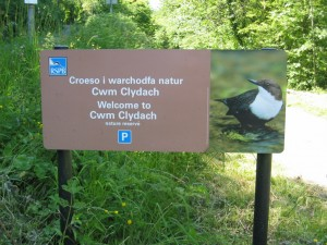 Welcome to Cwm Clydach Nature Reserve