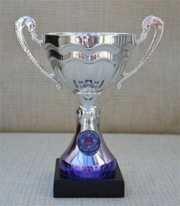 Gaelic Football Trophy